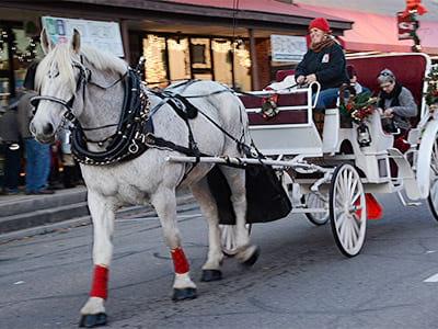 christmas carriage rides franklin north carolina