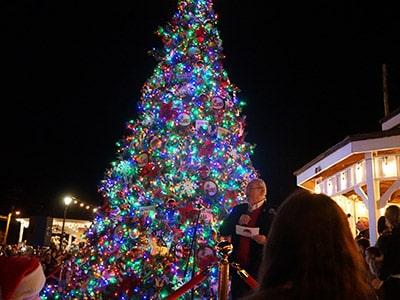 christmas tree lighting franklin north carolina winter wonderland